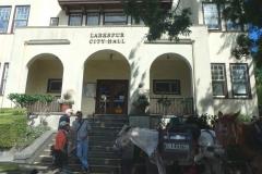 8/12/15 Larkspur