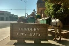 6/22/16 Reedley