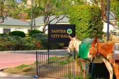 2014 Santee