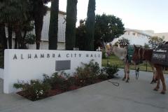 1/6/15 Alhambra