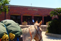 2014 City Hall