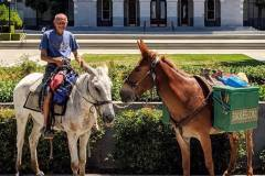 The Mules submitting the government claim form in Sacramento