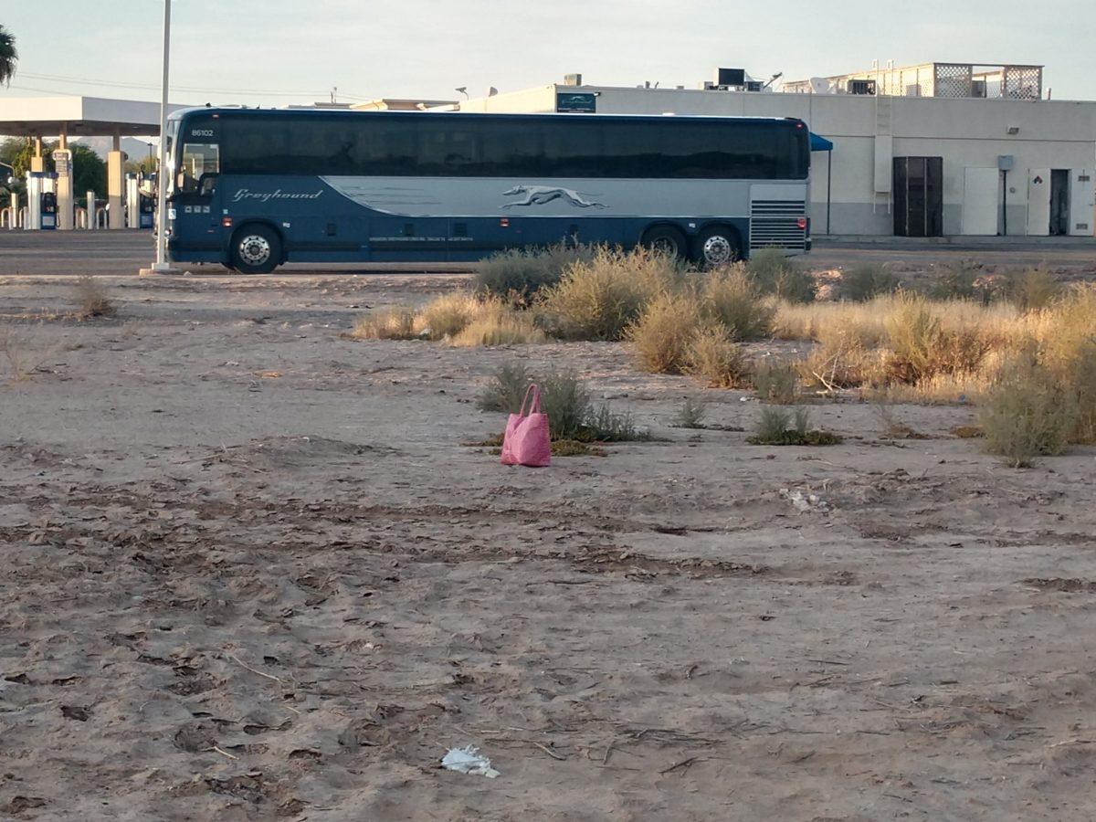 Pink Carryall Greyhound Bus