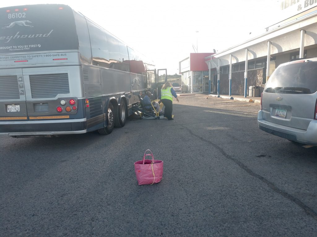 Pink Carryall Greyhound Bus 2