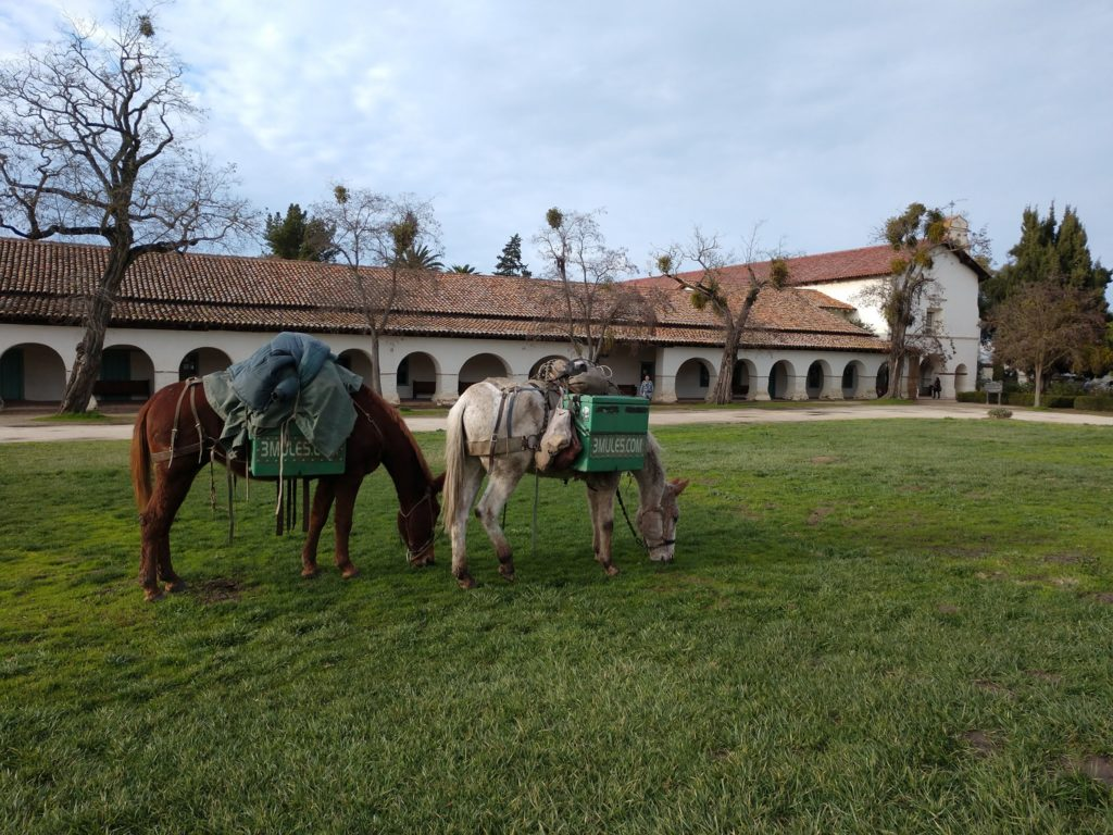 The Mules in San Juan Bautista