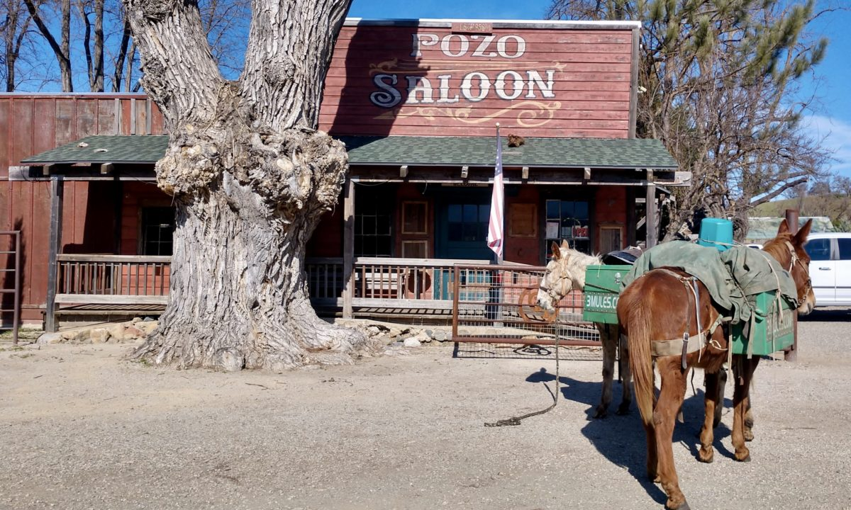 The Mules at Pozo Saloon